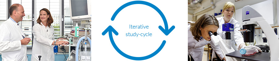 Iterative study-cycle